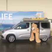 Ein geräumiger und leichter Van fürs Arbeits- und Freizeitleben – Der Opel Combo Life